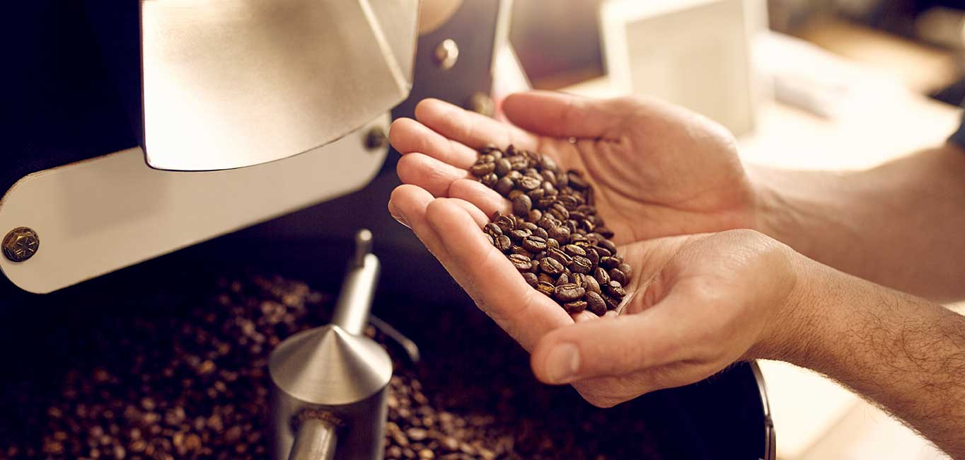 What are the 10 differences between Robusta and Arabica coffee?